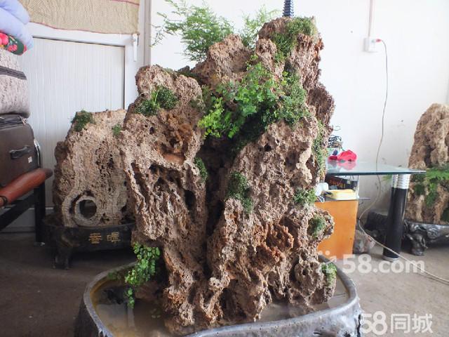 吸水石假山盆景制作  (640x480); 上水石假山盆景图片; 上水石 吸水石