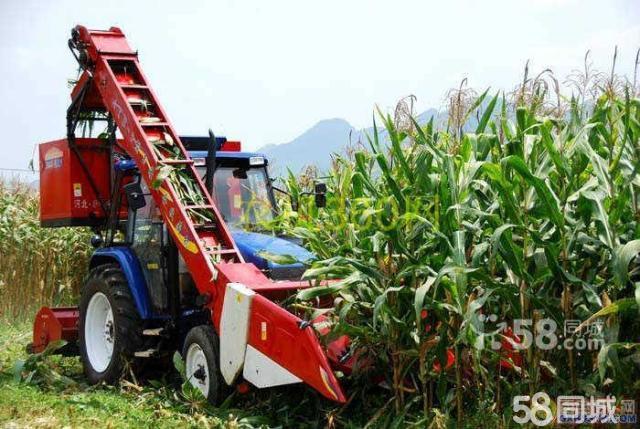 急售福田雷沃904大型拖拉机,价格绝对公