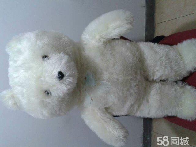 2米白色抱抱熊/玩具熊