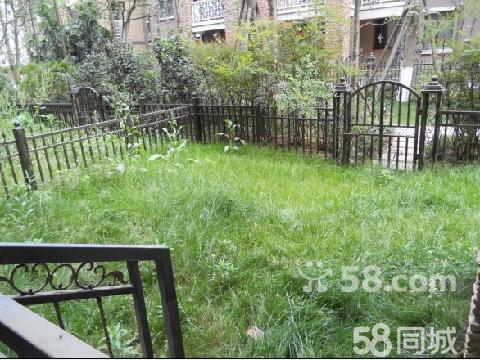 购买的一楼带花园 花园加价 的房子,发现花园内有一个排水管,是整