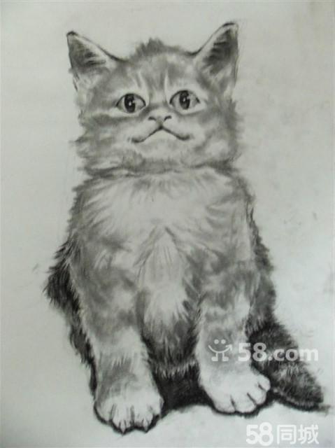 纯手绘代画定制素描头像,动漫人物,动物画