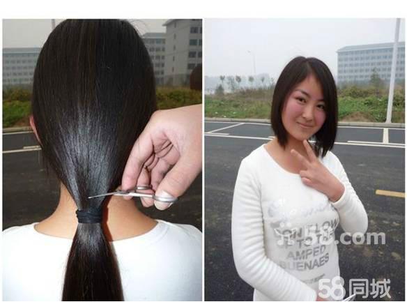 (提供帮助)收长头发(珠海/中山)图片