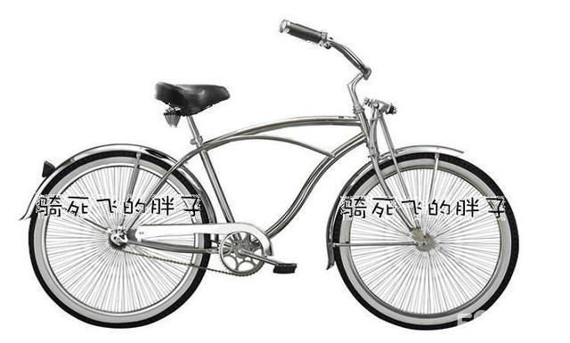 美国自行车哪个牌子好图片