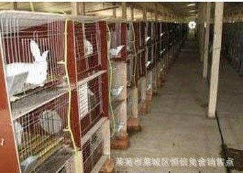 瓷砖兔笼,地板砖兔笼