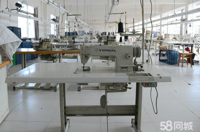 【图】标准牌工业缝纫机转让(640x424,68k)-制衣厂转让 佛山制衣厂