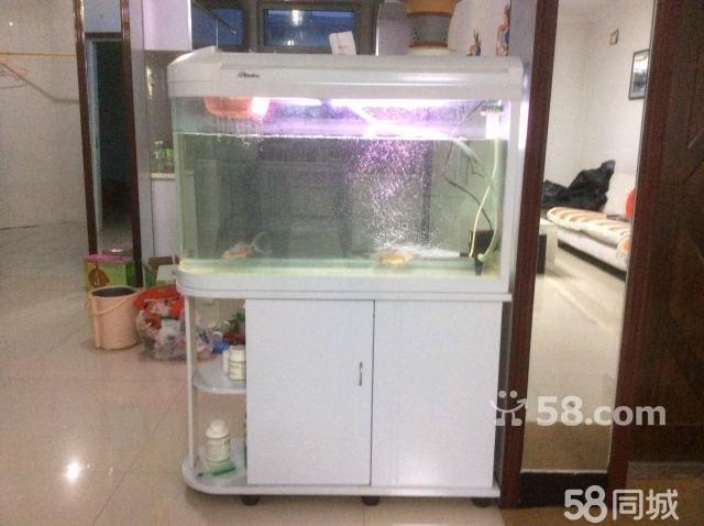 客厅鱼缸摆放风水图,客厅鱼缸的摆放位置,客厅鱼缸隔,客厅鱼缸高清图片