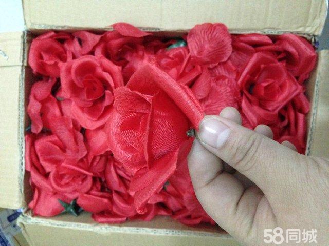 玫瑰花瓣 png展示