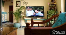 客厅电视背景墙家居植物摆设