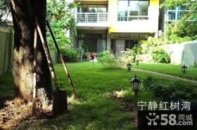 东南亚风格阳台花园设计效果图
