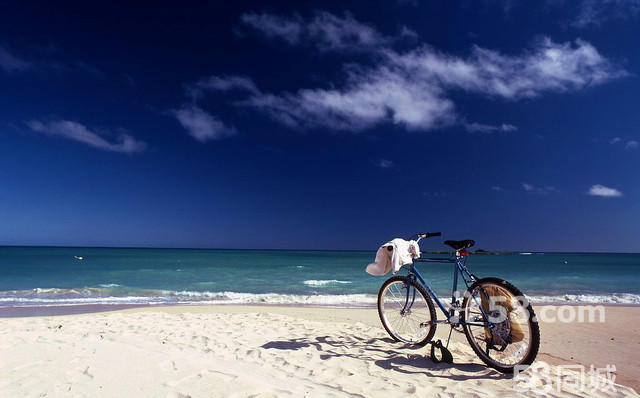 大鹏古城+摘草莓+杨梅坑骑单车+海边烧烤一日游