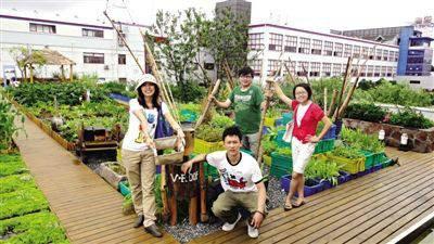 v-roof屋顶农庄 早教幼儿园户外体验种植