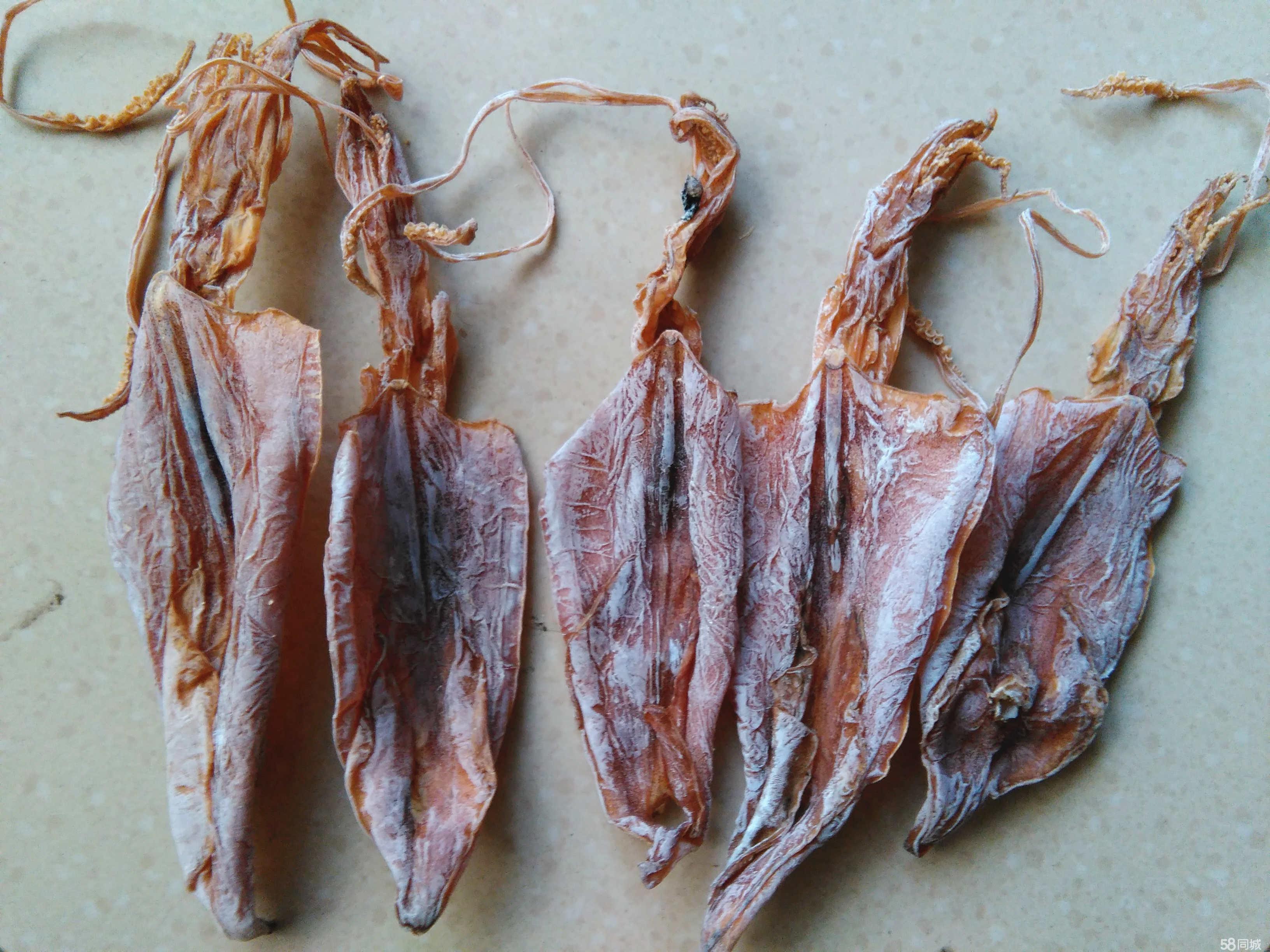 广西北部湾特产鱿鱼,河豚鱼干,海鳝鱼干  鱿鱼,虽然习惯上称它们为鱼